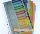 Chia file (Phân trang) nhựa 12 màu A4