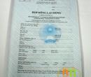 Hợp đồng lao động (Anh-Việt)