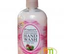 Nước rửa tay Fruise/Goodlook 500ml